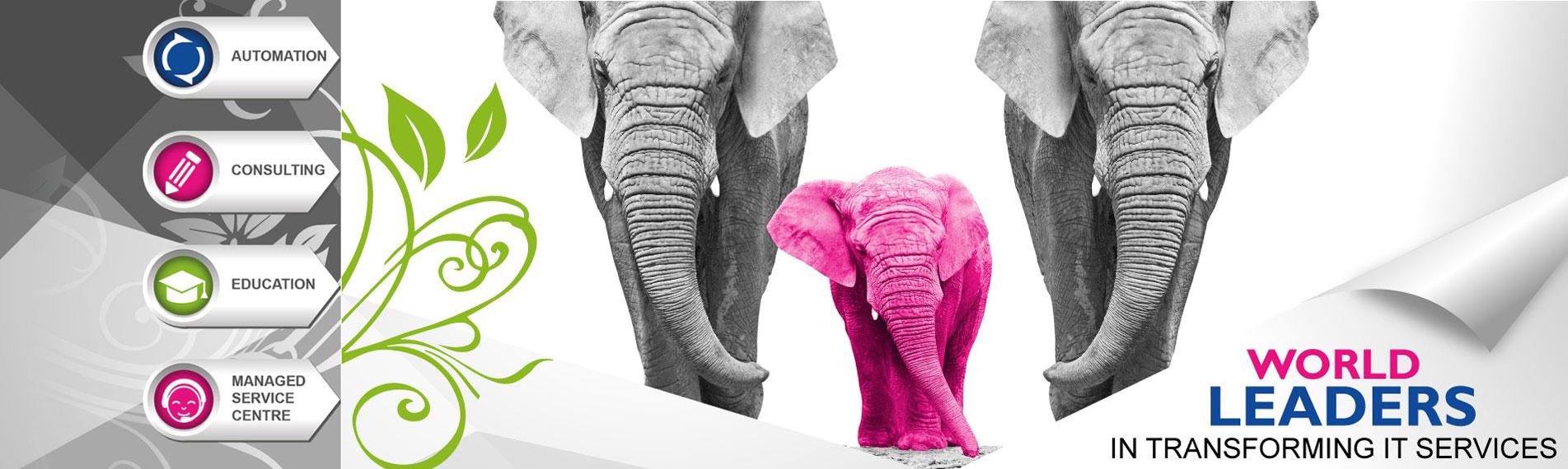 Pink Elephant Pink Elephant News Archive Itweb